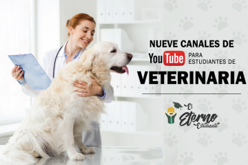 canales de youtube veterinaria