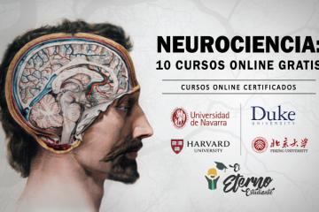 cursos online gratis de neurociencias
